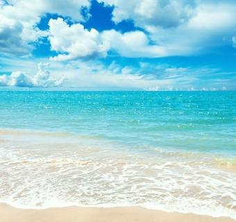 Iškyla prie jūros